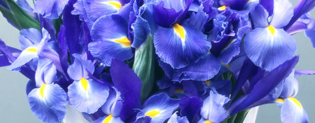 floral arrangements for office