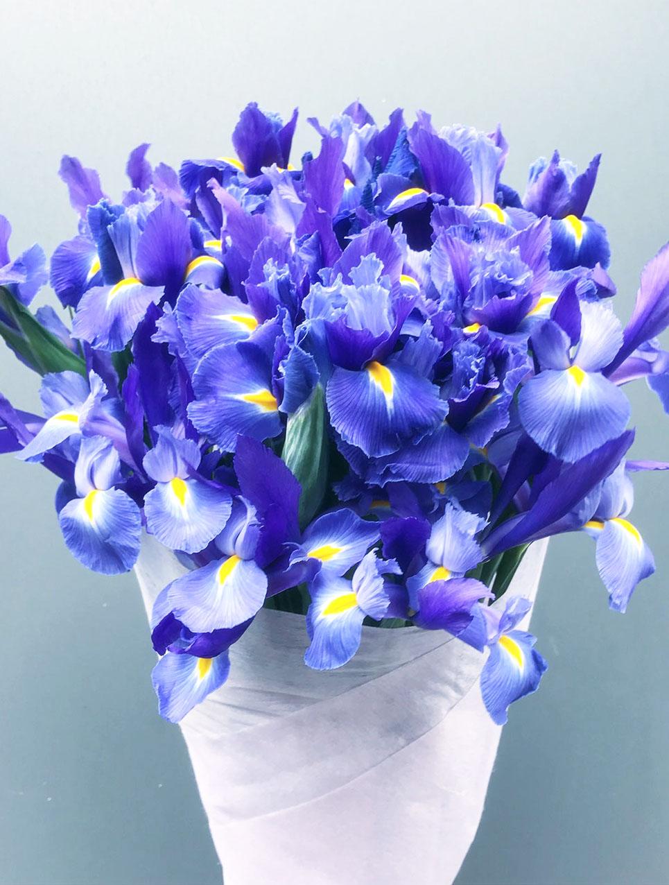 Different Floral Arrangements for Office