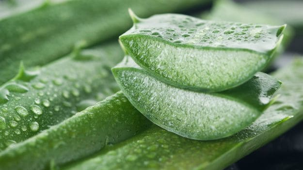 Ways to Use Aloe Vera Gel