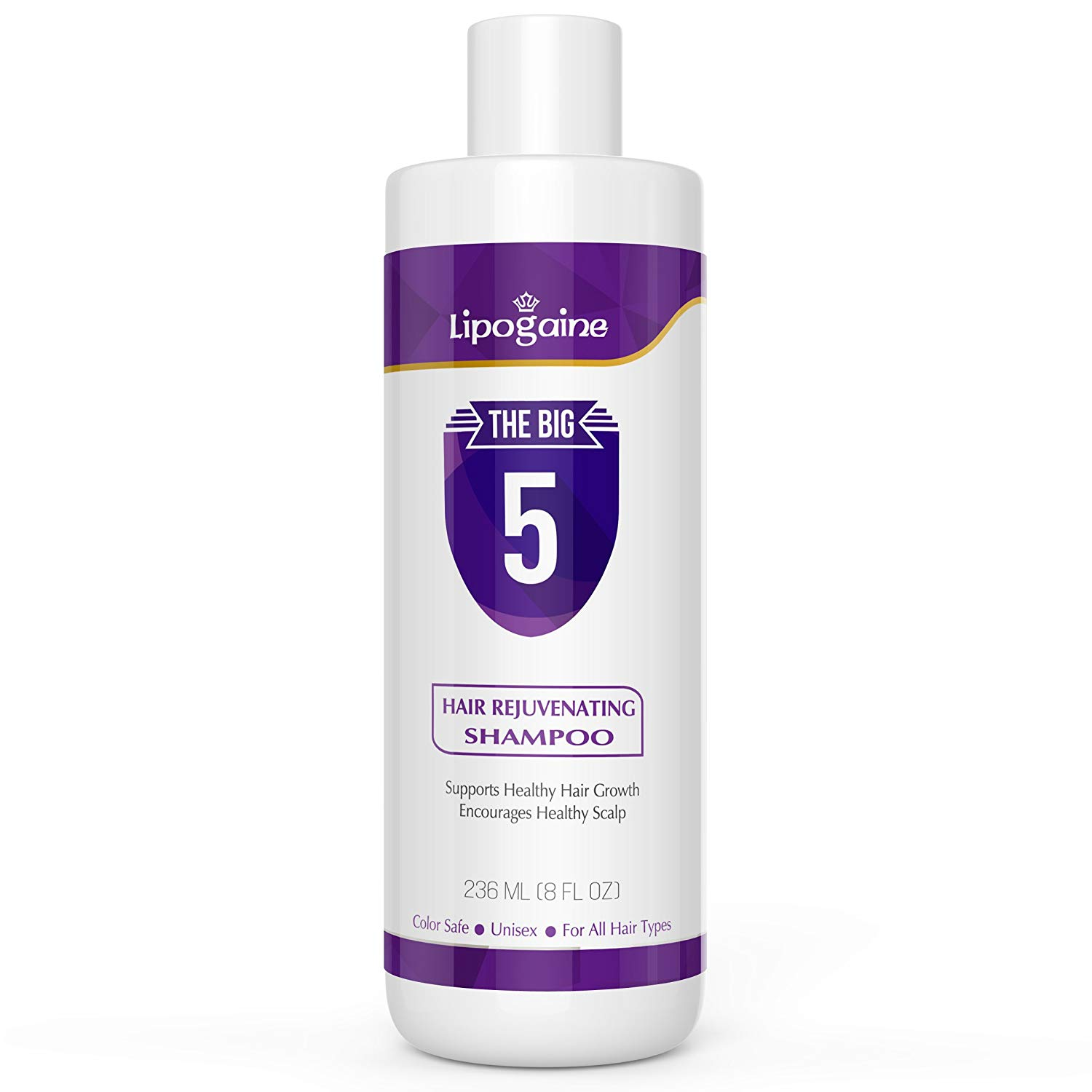 Lipogaine Big 5 All Natural Shampoo (price – Rs. 2950)